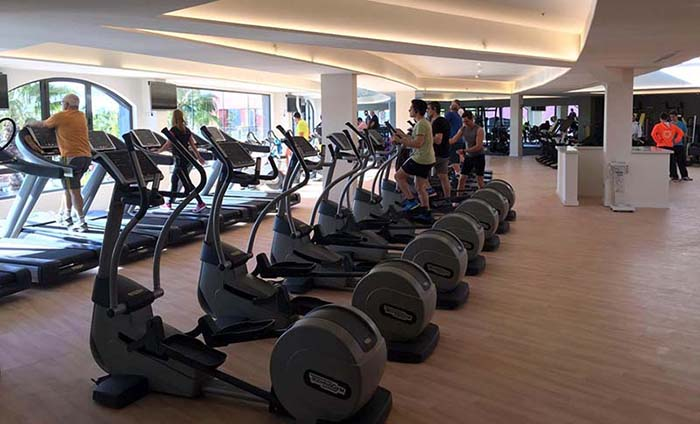 Wood finish flooring in rolls - Gym flooring - Sportex