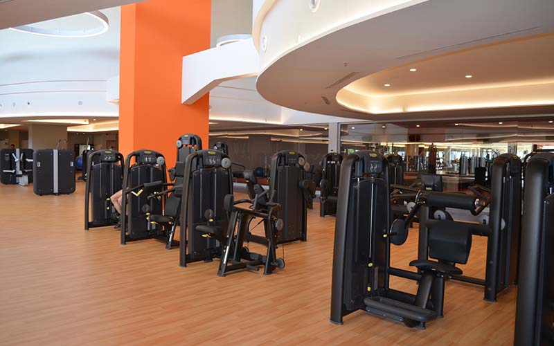 Wood finish floorings - Gym flooring in rolls - Sportex